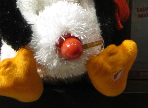 Perky penguin close up