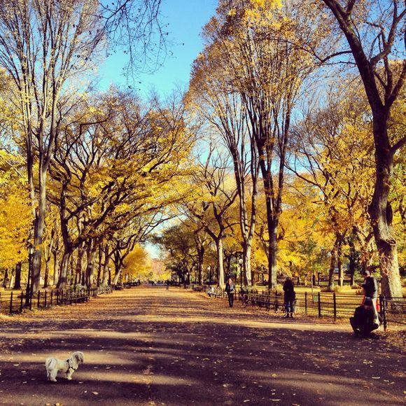 Autumn Found Us