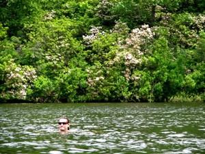 Wilderness_pond_with_boy
